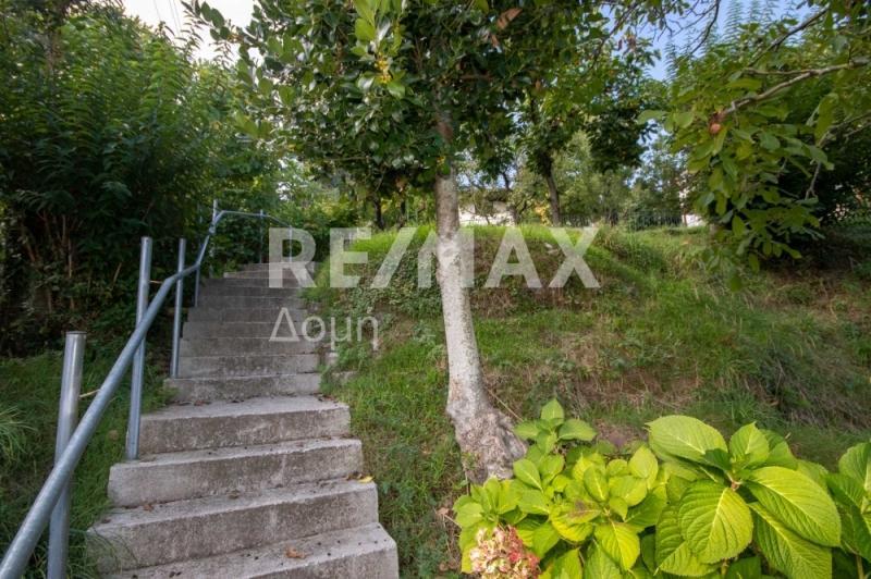 Σκάλα στον κήπο